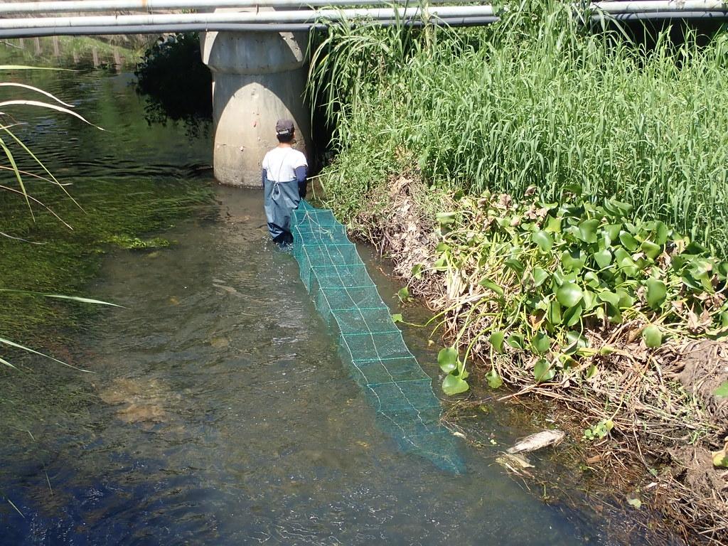 溪流採捕利用方式多元,須建立永續利用觀念。圖片提供:洄瀾風生態有限公司