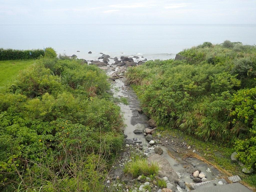 臺灣東半部至南臺灣臨海溪流洄游性生物多樣性高。圖片提供:洄瀾風生態有限公司