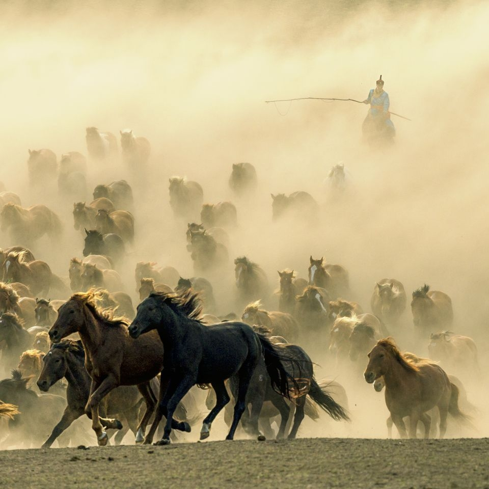 Photograph by Sharon Wan , National Geographic Your Shot