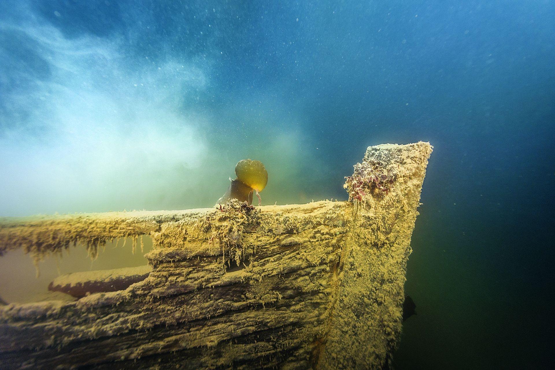 2016年,在加拿大北極地區的威廉國王島外海找到了恐怖號,這是遇難的富蘭克林探險隊兩艘失事船的其中一艘。圖中這艘小型探險船隨著恐怖號一起沉入海底,靜臥在距離母船不遠的海床上。THIERRY BOYER, PARKS CANADA