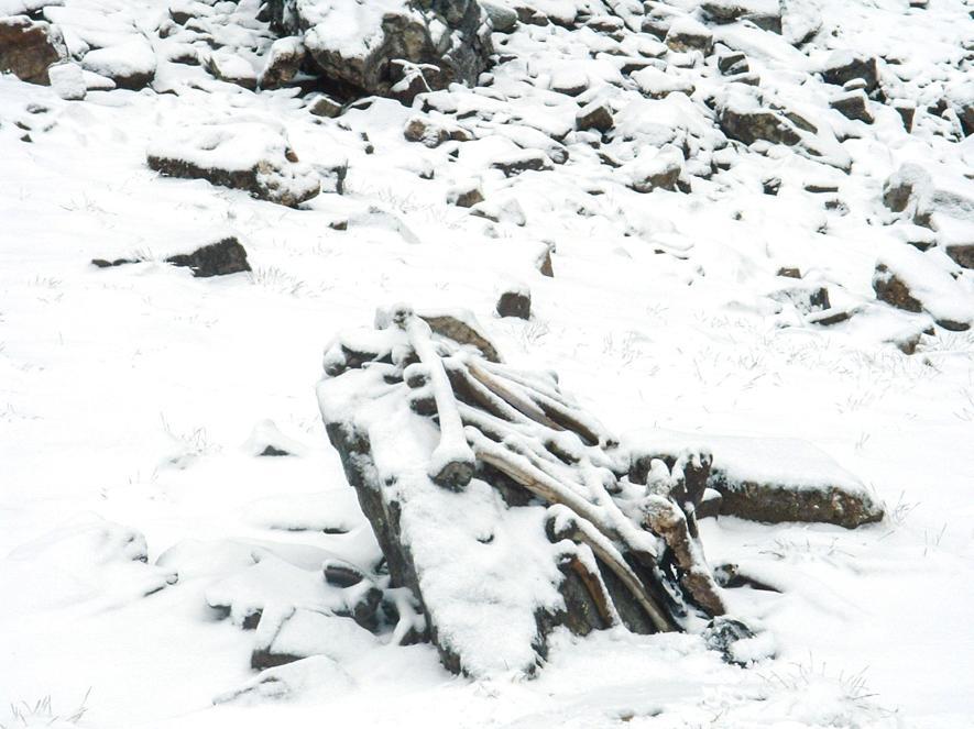 多年以來,抵達路普康湖的健行者都會將人骨集結擺放。 PHOTOGRAPH BY PRAMOD JOGLEKAR