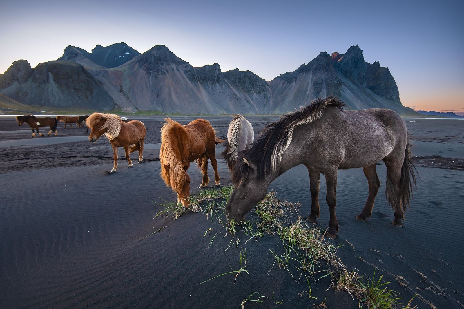 Photograph by Donald Yip, National Geographic Your Shot