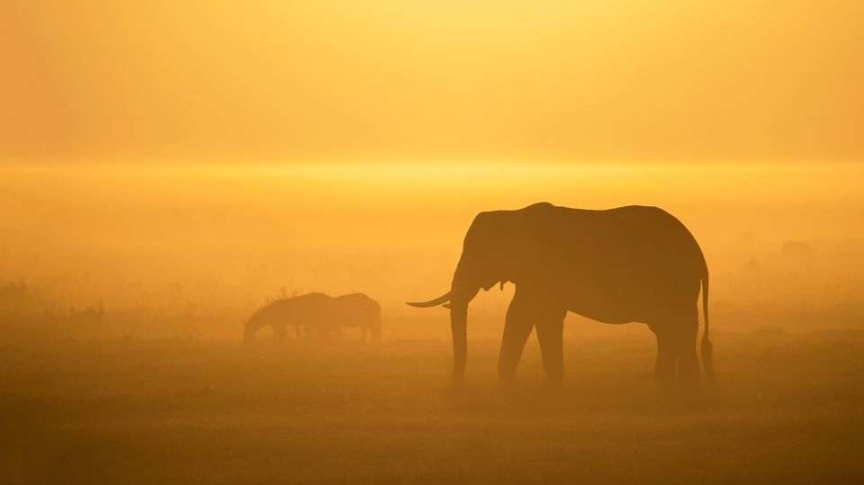 Photograph by hao jiang, National Geographic Your Shot