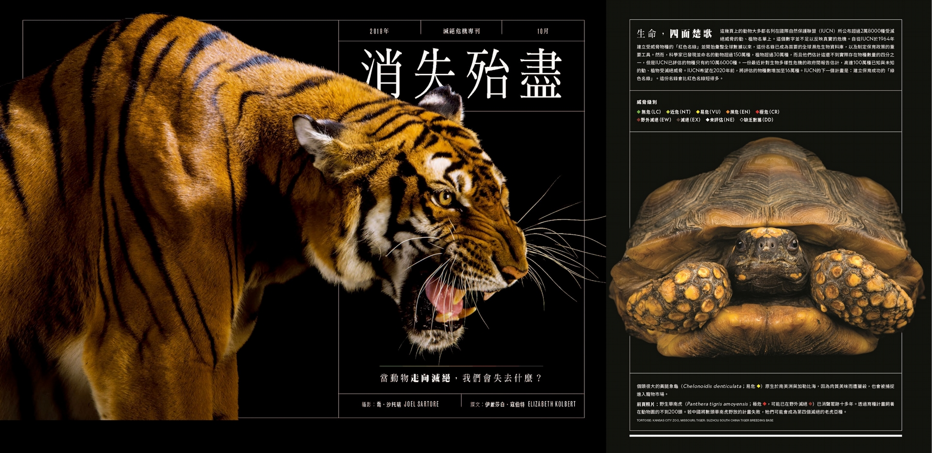 攝影:喬.沙托瑞 JOEL SARTORE;TORTOISE: KANSAS CITY ZOO, MISSOURI; TIGER: SUZHOU SOUTH CHINA TIGER BREEDING BASE
