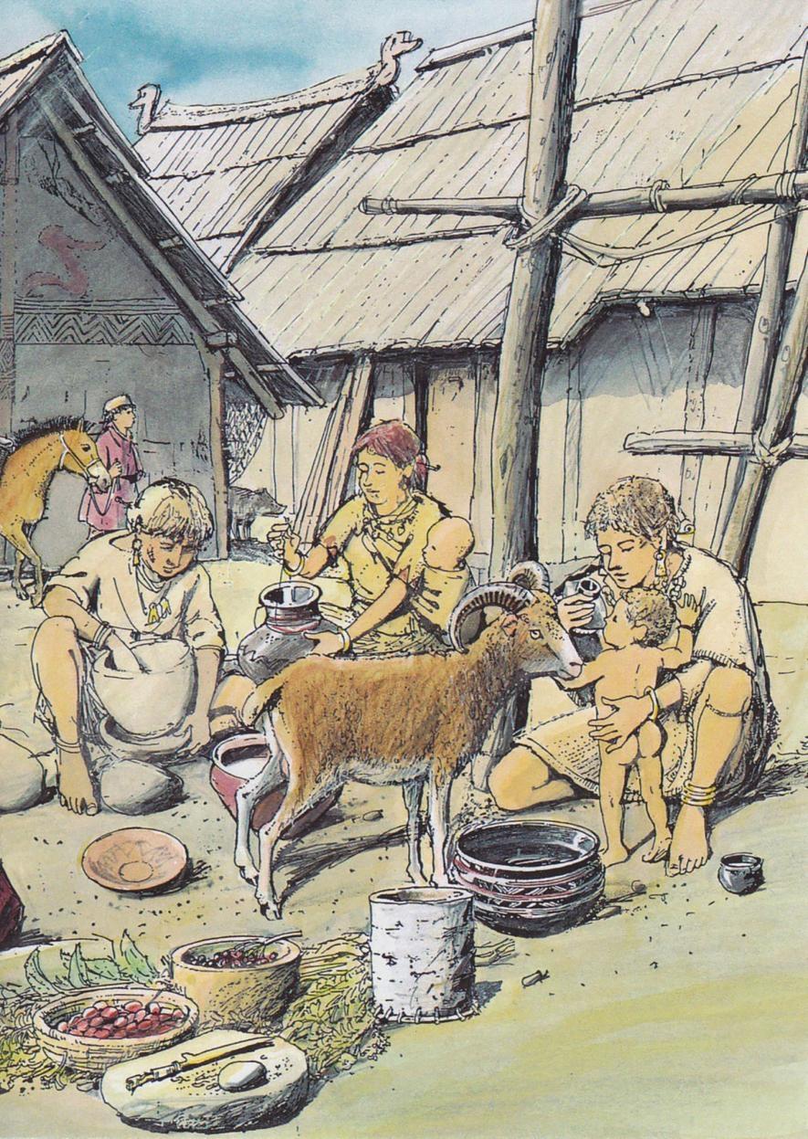 在德國新石器時代村落中發現的奶瓶,讓我們得以深入一瞥古代人類如何照顧嬰兒。ILLUSTRATION BY CHRISTIAN BISIG, ARCHÄOLOGIE DER SCHWEIZ