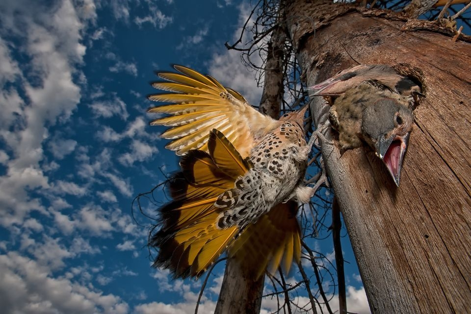 Photograph by Peter Mather, National Geographic Your Shot