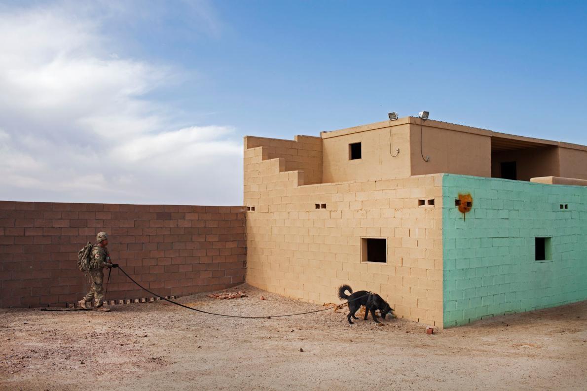 <b>頂尖嗅聞高手</b> – 上兵強納生.范戴克(Jonathan Van Dyk)和他的狗在猶馬演習場受訓,他們正在一處建築物內搜尋爆裂物。PHOTOGRAPH BY ADAM FERGUSON, NATIONAL GEOGRAPHIC