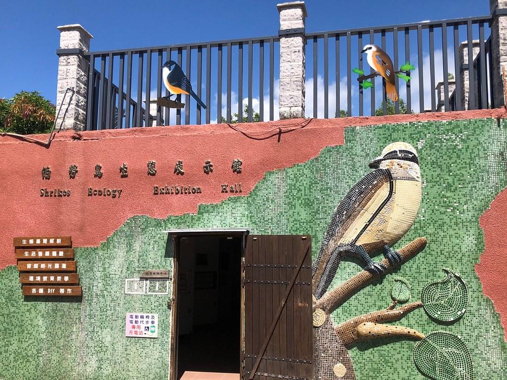 楓港社區在鄉長協助下,善用廢棄的舊軍營活化利用,變身伯勞鳥生態展示館。攝影:廖靜蕙