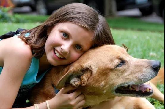 調查中,孩子們最喜歡狗和貓|Pixabay