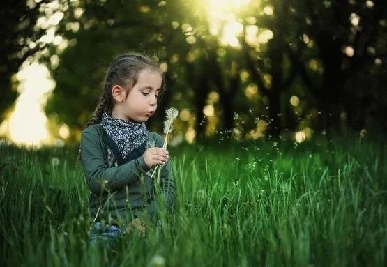 引導孩子們親近大自然,可以緩解孩子們和野生動植物脫節的情況|Pixabay