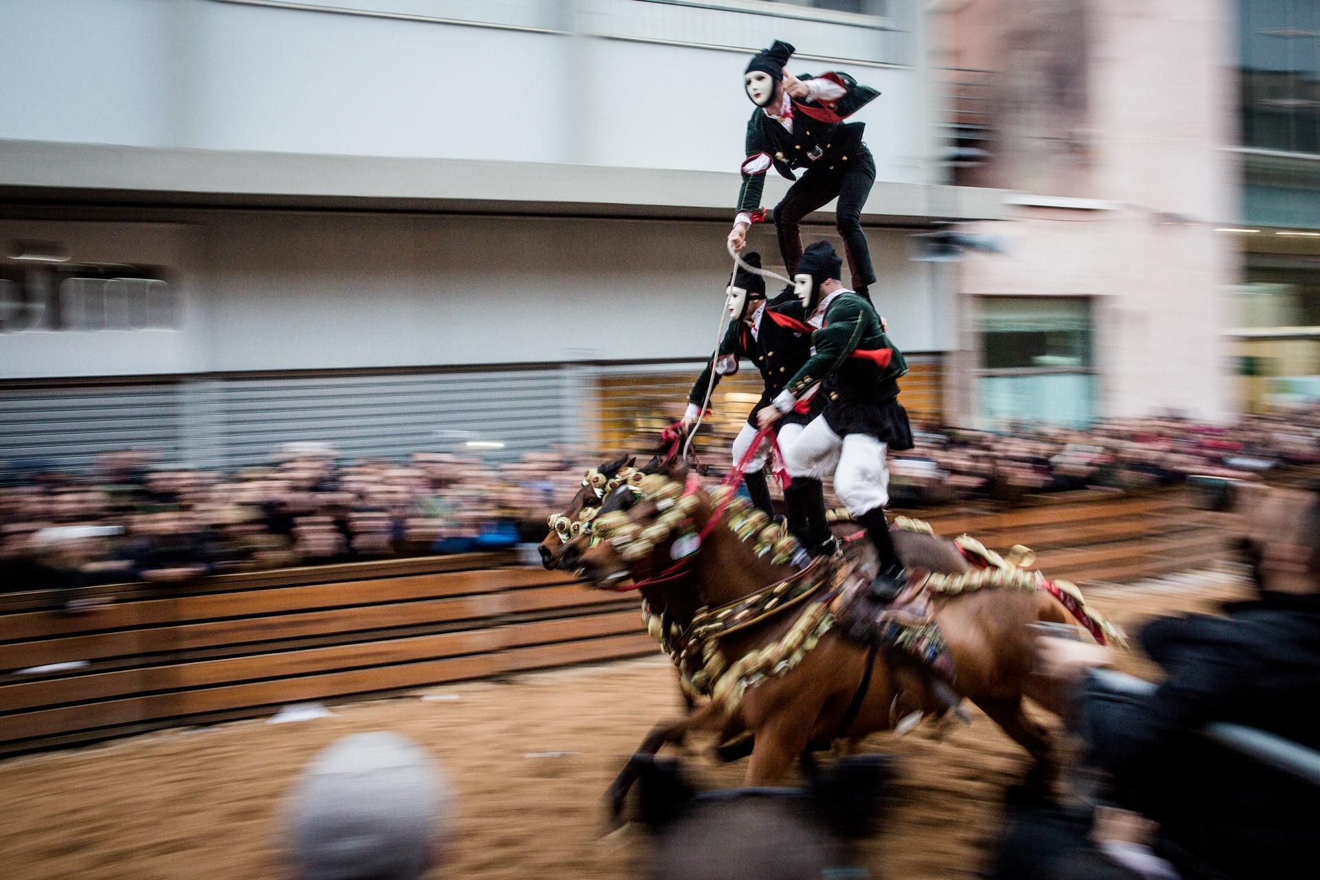 葩立耶 - 「穿星」活動結束後,同一隊騎士會展開另外一段稱為「葩立耶」(Pariglie)的馬術儀式。應該不難看出,奧里斯塔諾的騎士確實是全島上最出色的! PHOTOGRAPH BY MICHELE ARDU