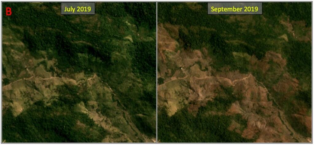 圖為Mongabay記者造訪過的保護區南部區域,其中可見大面積的焚燒範圍。 轉載自Mongabay,來源:Planet Labs。