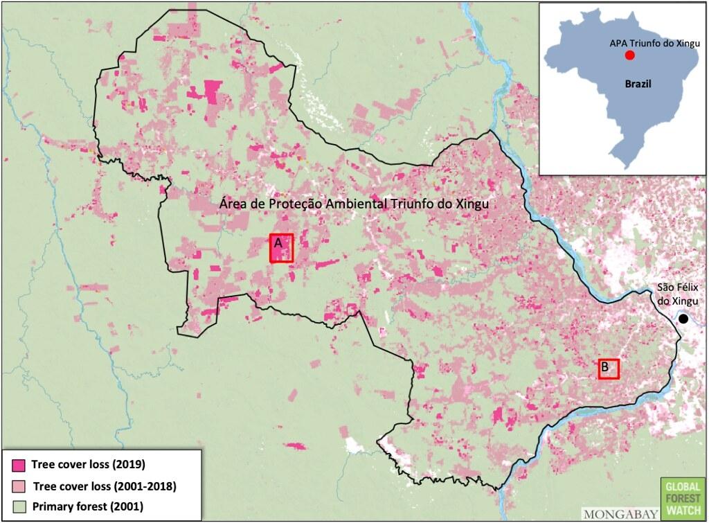 不到20年前,欣古勝利保護區內幾乎都是原始林,但如今有許多區域為了農業使用已被砍伐殆盡。圖片來源:GLAD/UMD,全球森林觀察(Global Forest Watch)提供。