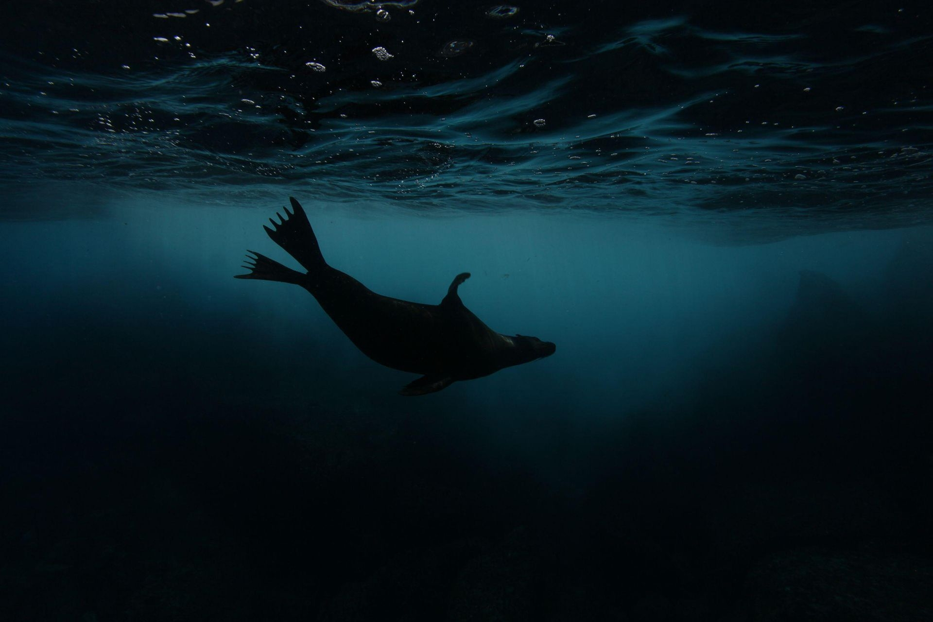 Photograph by Mike Korostelev, National Geographic Your Shot