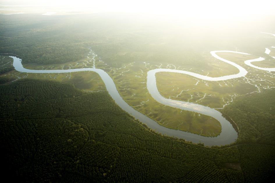 升高的 CO2濃度加上變暖的氣溫,二者結合的結果是植物消耗的水量增加。這將導致如這條南卡羅來納州阿十波河(Ashepoo River)的河流的水量下降。 PHOTOGRAPH BY VINCENT J. MUSI, NAT GEO IMAGE COLLECTION