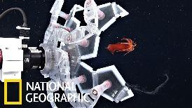 深海生物總是太柔軟?那是你的機器人不夠「溫柔」!