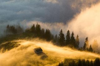 金黃色的霧氣