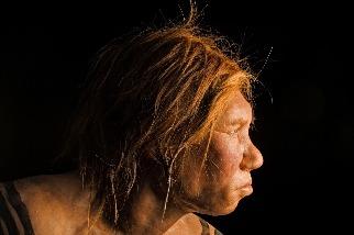 你可能有比自己所想更多的尼安德塔人DNA