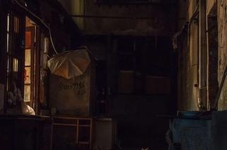 上海巷弄裡的貓