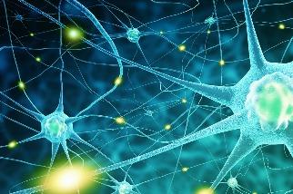 「看見」大腦記憶的生成──超解析 3D 層光定位顯微鏡