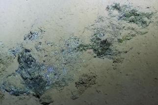 馬里亞納海溝疑似微生物的物質,暗示了木星衛星可能的生命樣貌