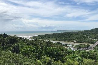 墾丁陸蟹發現五新種兩新紀錄種 港口溪佔四新種穩坐「陸蟹之河」