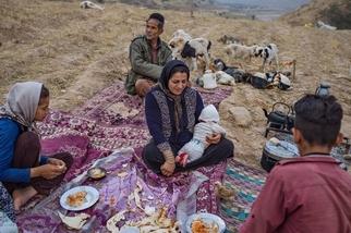消失中的伊朗游牧民族