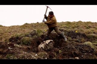 長毛象牙獵人:凍原尋寶