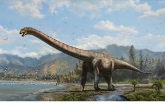 中國發現新種長頸龍