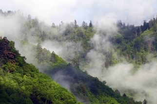 【華人探險家專欄──徐仁修】王朗遲來的春天