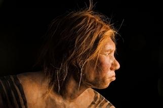 古代女孩的爸媽竟是不同物種的人類