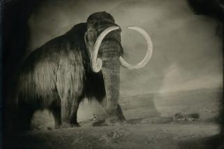 逆轉滅絕:物種大復興