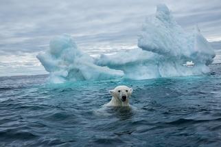 氣候變遷:你必須知道的七件事