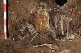 古代歌德人的侵略罕見地留下焦黑屍骨