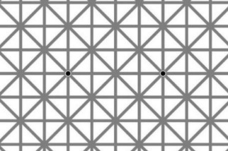 網格上的黑點:它們怎麼消失了?
