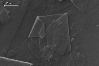 全世界最纖薄的摺紙,你一定沒見過