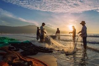越南風情:收網的漁人