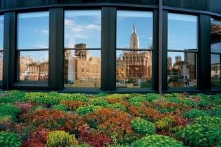 曼哈坦屋頂花園