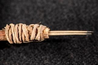 考古學家辨識出2000年前的刺青針