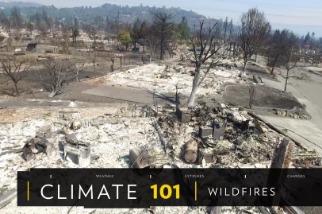 101氣候教室:野火