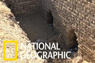 沙漠中出土超過800座古埃及墓穴