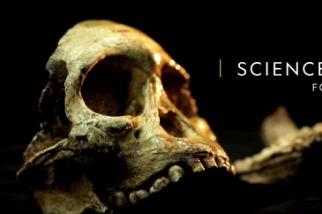 101科學教室:化石
