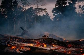 亞馬遜雨林的減少會如何影響遙遠地區的供水和氣候?