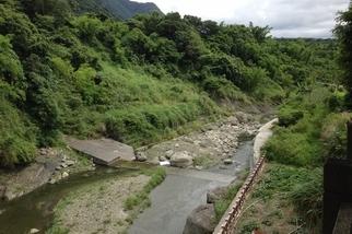 讓「哈拉」找到回家的路 九河局治理鱉溪 破天荒與居民共學