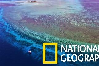 放鬆一下!跟我們一起潛入純淨的「圖巴塔哈群礁」