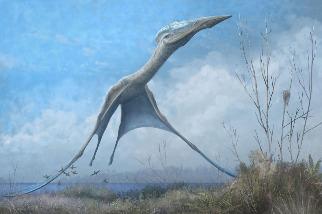 巨大南極翼龍從博物館中浴火重生