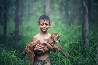 鄉村長大的孩子,就更喜歡大自然嗎?