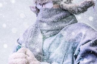 寒冷之地的魅力