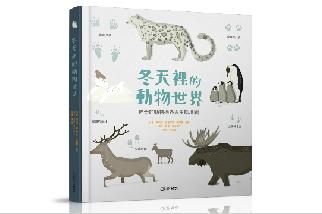 冬天裡的動物世界★神奇的動物過冬與生態地圖