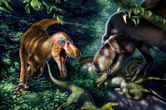 這些精瘦的掠食性恐龍其實是「青年」霸王龍!